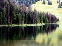 Landscape 1st Place -- Sally Stricker
