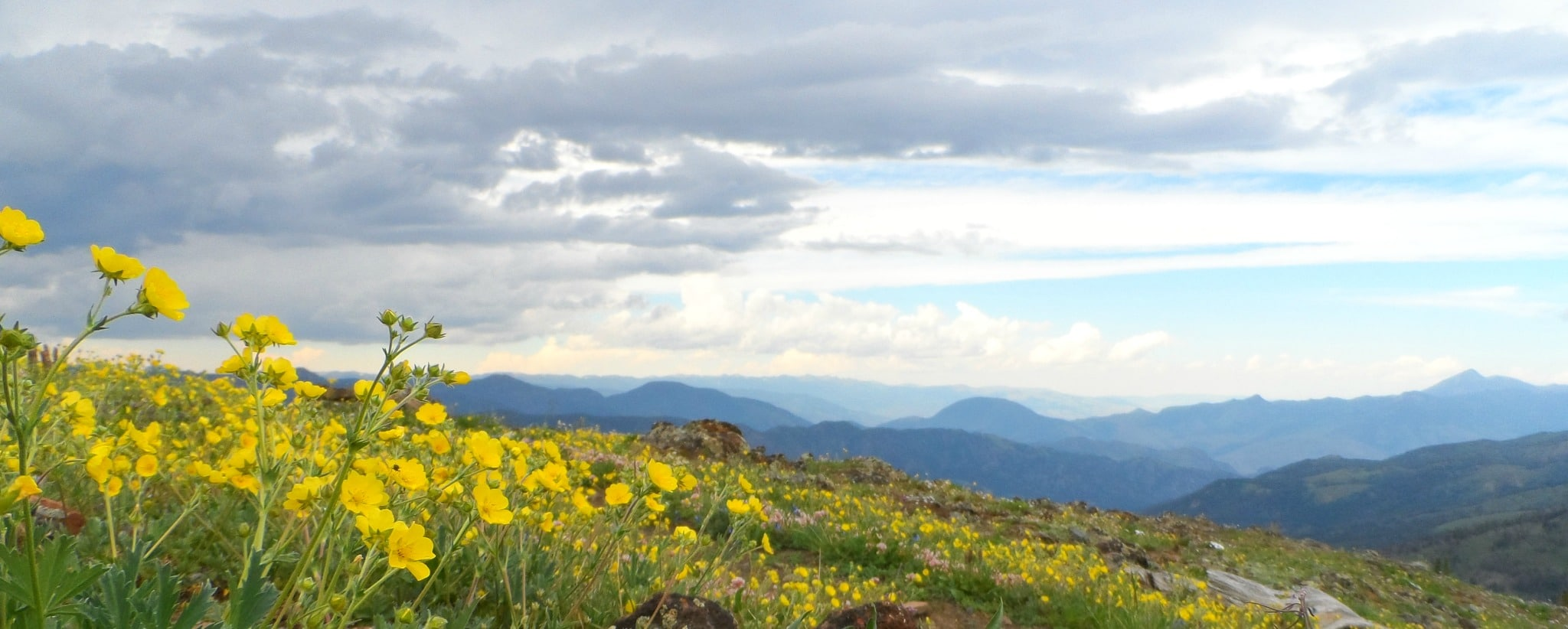 1,200 miles of backcountry trail await you!