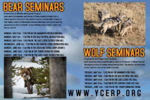 Bear Wolf Flyer 2016 - website